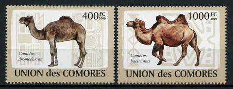 Comoros Camel Domestic Animal Serie Set of 2 Stamps Mint NH