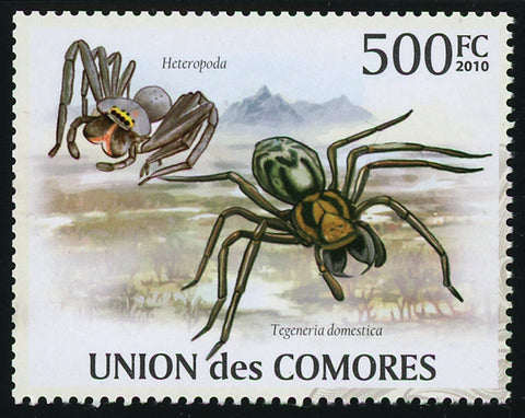 Spider Tarantula Insect Individual Stamp Mint NH