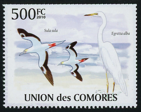 Sea Bird Seagull Ocean Individual Stamp Mint NH