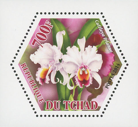 Orchid Plant Flower Nature Cattleya Trianae Mini Souvenir Sheet Mint NH