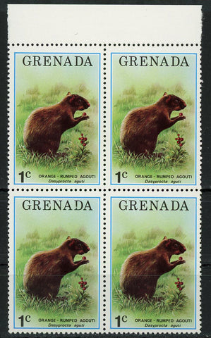 Orange Rumped Agouti Wild Animal Block of 4 Stamps MNH