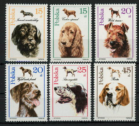 Poland Dog Animal Pet Cocker Spaniel Pointer Terrier Serie Set of 6 Stamps MNH