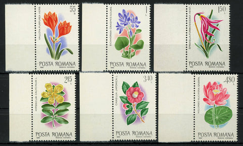 Romania Flower Stamp Vallota Purpurea Camella Japonica Serie Set of 6 MNH