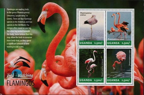 Flamingo Stamp Phoenicopteridae Chilean American Souvenir Sheet of 4 Mint NH