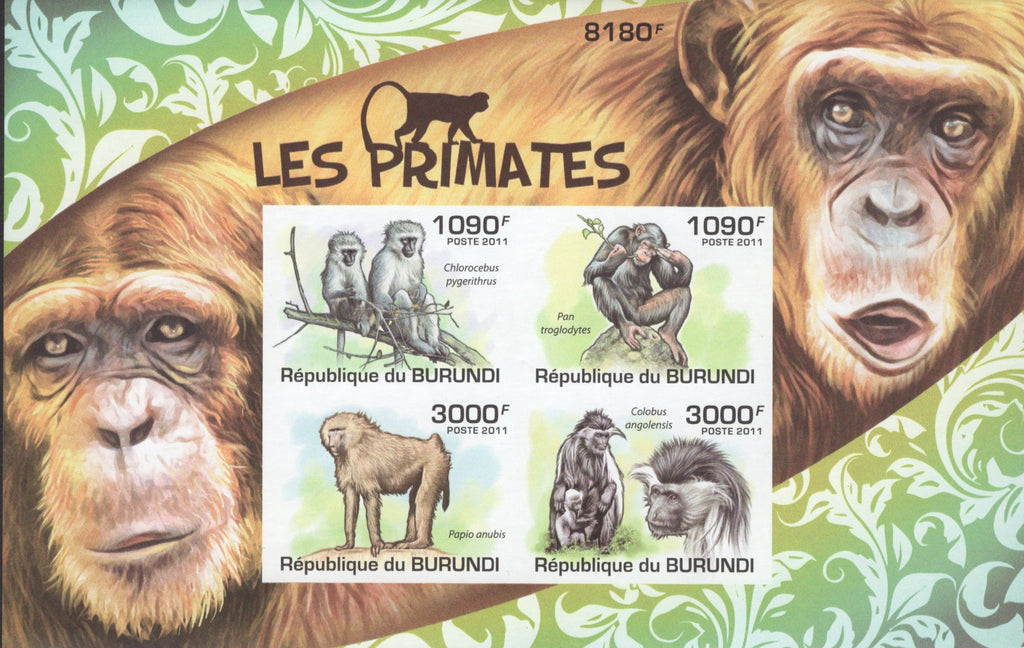 Monkeys Gorillas Nature Wildlife Vervet Monkey Chimpanzee Baboon Colobus MNH