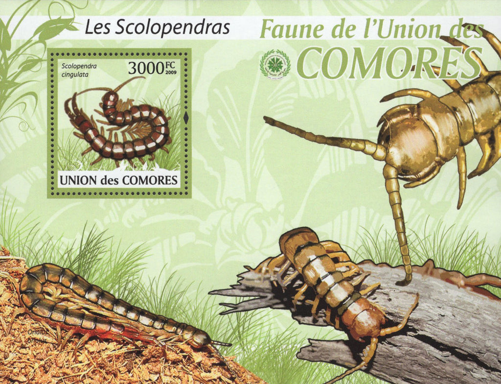Fauna Scolopendra Insects Souvenir Sheet Mint NH