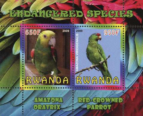 Endangered Species Bird Parrot Souvenir Sheet of 2 Stamps Mint NH