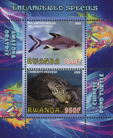 Endangered Species Fish Turtle Ocean Life Souvenir Sheet of 2 Stamps Mint NH