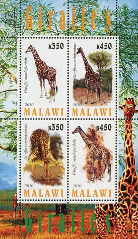 Malawi Giraffe Tree Wild Animal Fauna Souvenir Sheet of 4 Stamps Mint NH