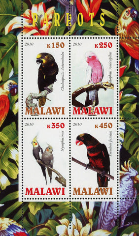 Malawi Parrot Bird Jungle Tropical Souvenir Sheet of 4 Stamps Mint NH