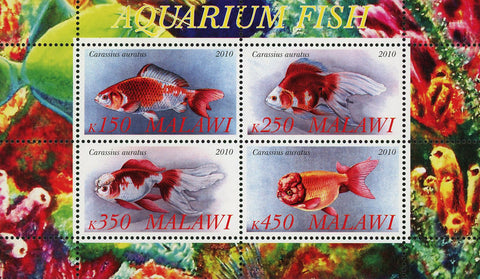 Malawi Aquarium Fish Ocean Life Marine Fauna Souvenir Sheet of 4 Stamps Mint NH