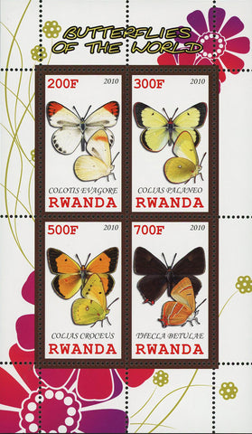 Butterfly Of The World Colias Croceus Insect Souvenir Sheet of 4 Stamps MNH
