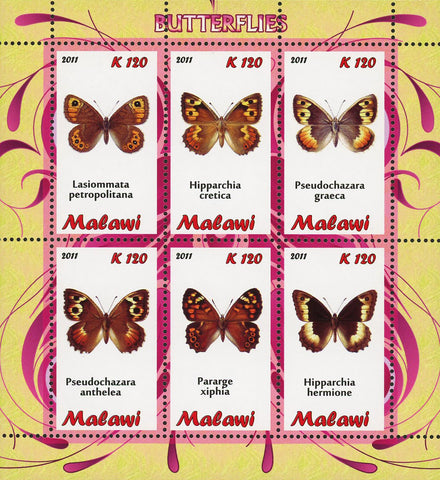 Malawi Butterfly Insect Pararge Xiphia Souvenir Sheet of 6 Stamps Mint NH