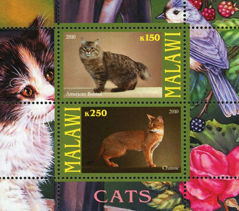 Malawi Cat Pet Domestic Animal American Bobtail Souvenir Sheet of 2 Stamps Mint