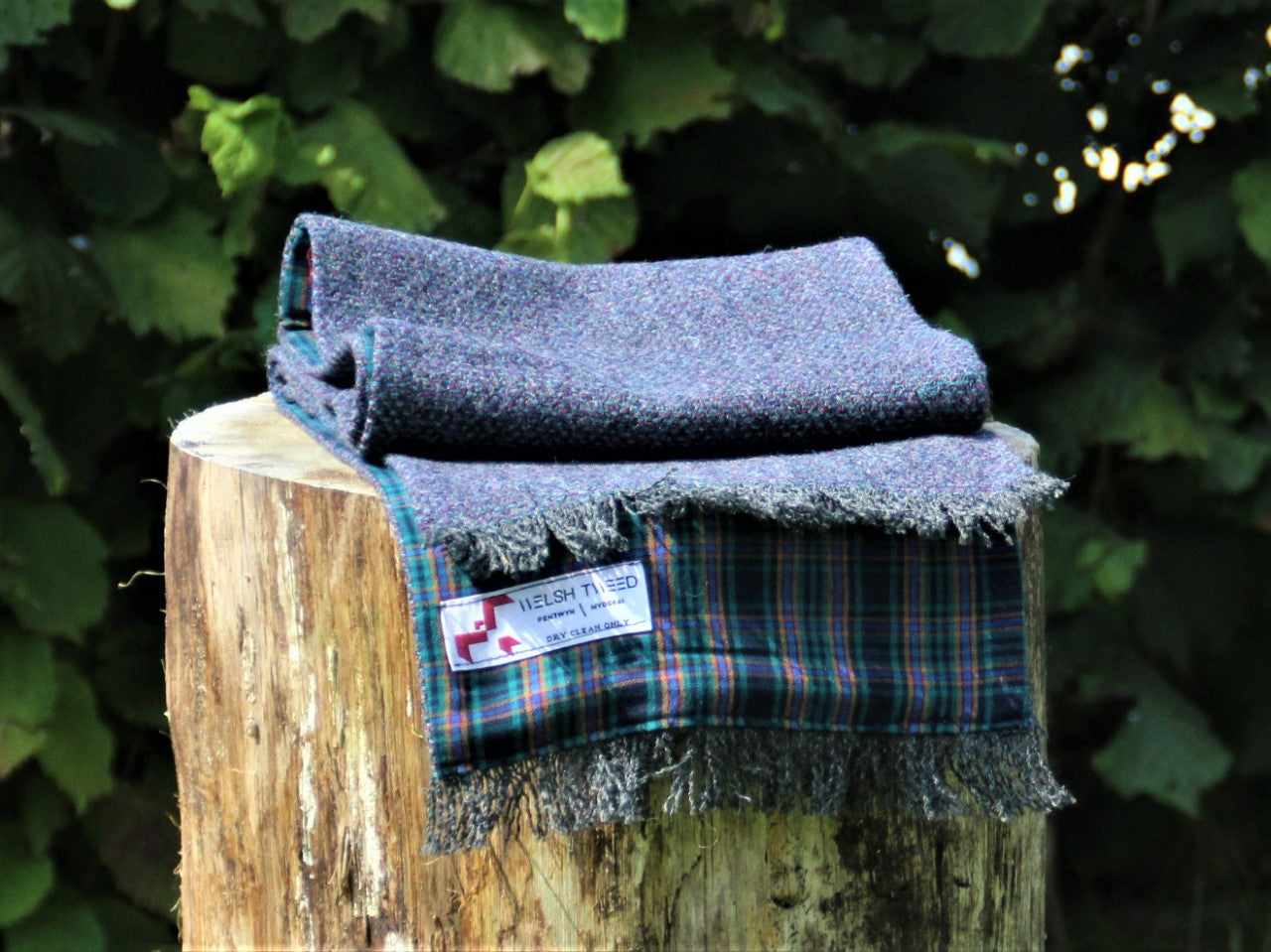 Tenby Tweed with Blue, Green and Yellow Check Lining