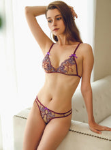 Load image into Gallery viewer, Lace Embroidery Bra Set.