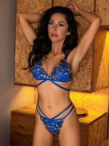 Blue Butterfly Embroidery Bra Set