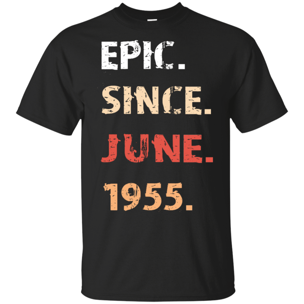 Epic Since June 1955 Birthday Gift 22-113-71482149-252 - Tee Ript