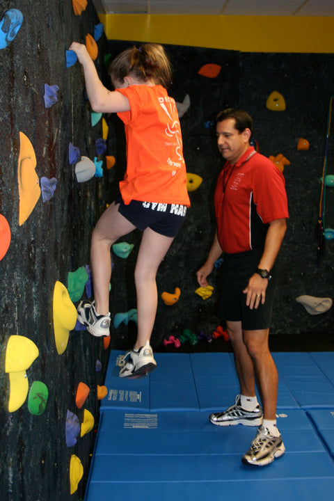 Customized Deluxe Climbing Wall Panel - actionbasedlearning