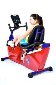 Fully Recumbent Bike
