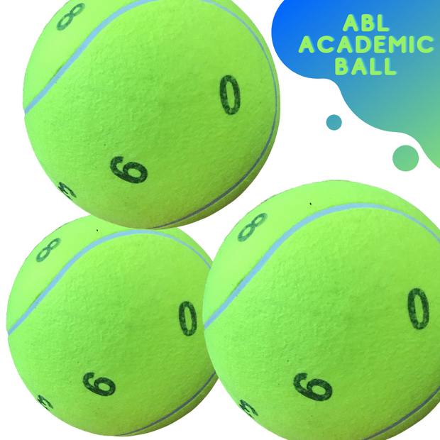 Academic Ball - actionbasedlearning
