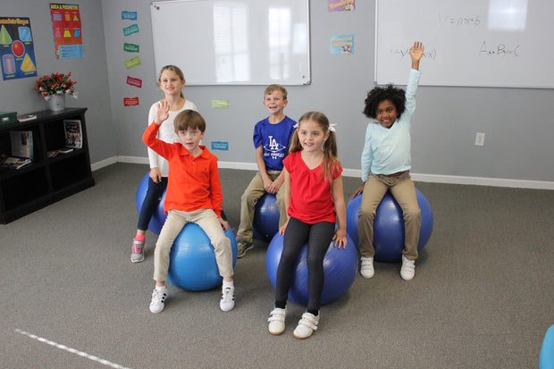 Classroom Balance Ball (Sold in set of 5)