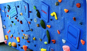 Customized Deluxe Climbing Wall Panel