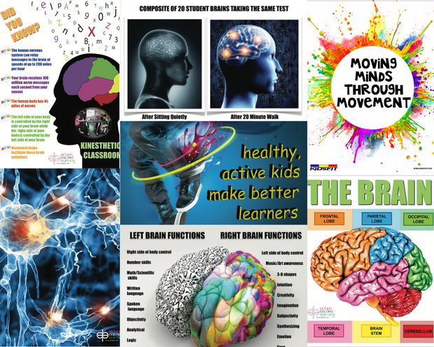 Body Brain Adventure Graphics Package - actionbasedlearning
