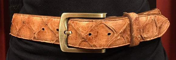 Chacon Pirarucu Straight Belt in Cognac