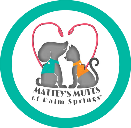 Mattey's Mutts of Palm Springs