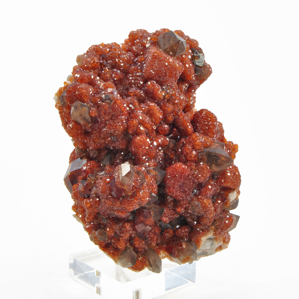 Spessartine Garnet over Smoky Quartz 4.27 inch 1.21lbs Natural Crystal Cluster - China