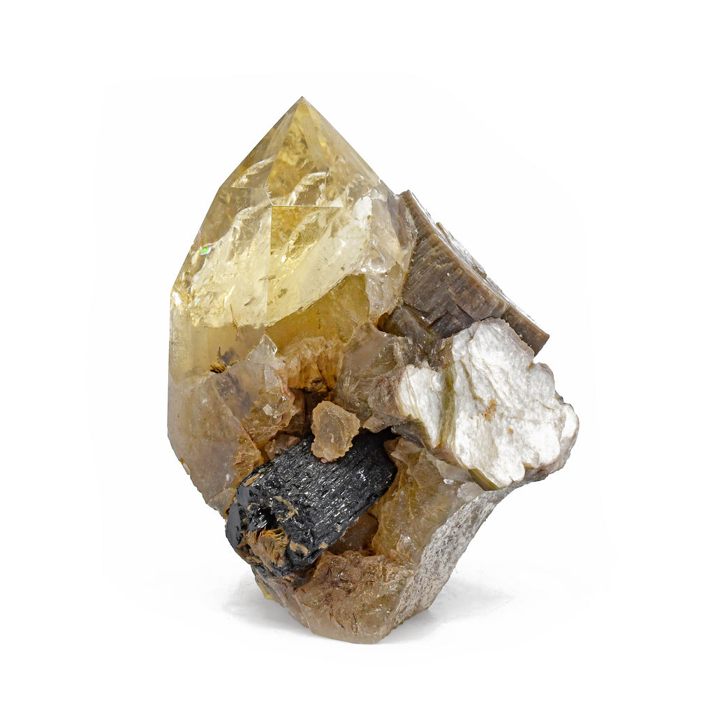 Citrine 5.8 inch 3.11 lbs with Black Tourmaline and Mica Partial Polished Natural Crystal - Brazil