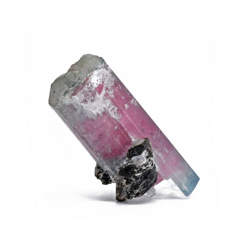 Tourmaline - Pink And Blue Watermelon Tourmaline Natural Double-Terminated Gem Crystal-Pakistan