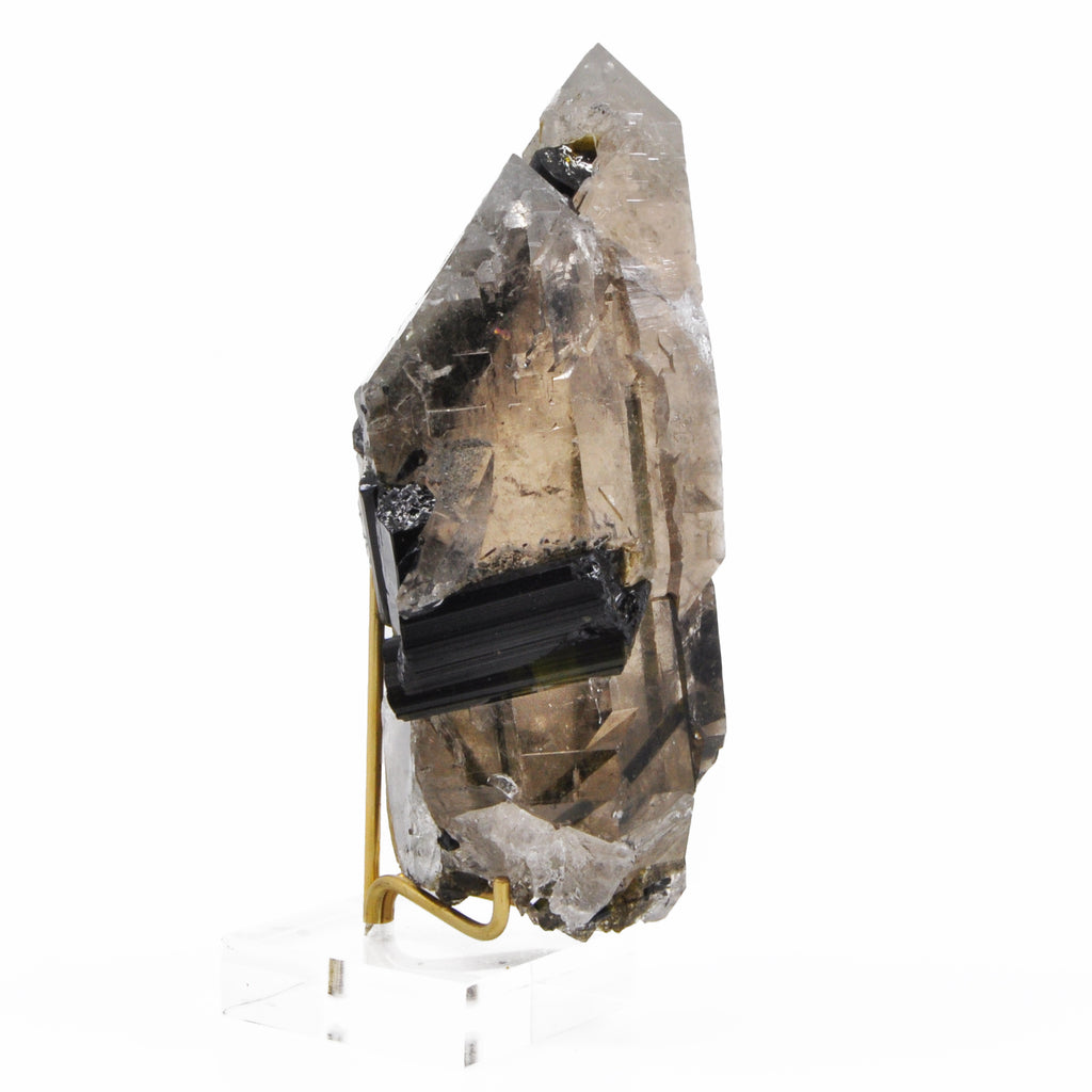 Smokey Quartz 4.92 inch 400.3 gram with Watermelon Tourmaline Natural Cathedral Crystal - Brazil