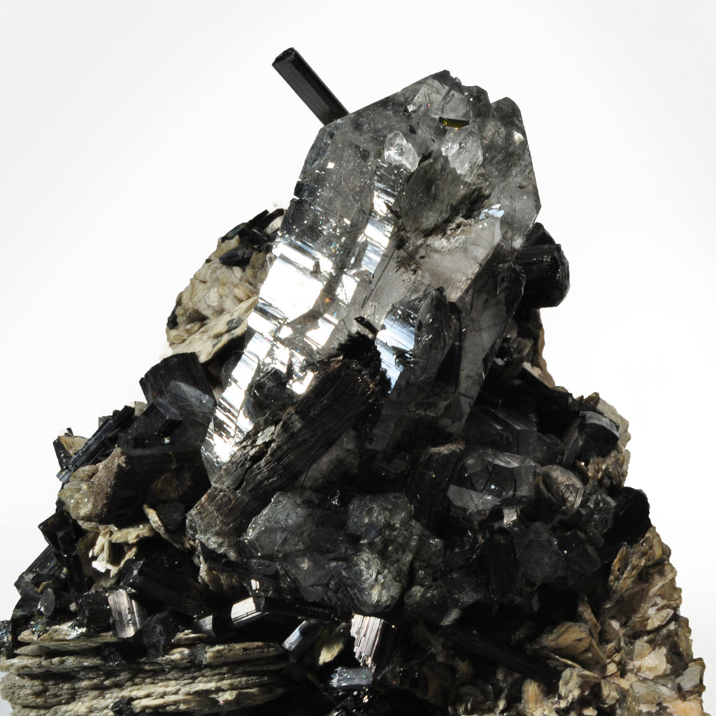 Black Tourmaline in Quartz with Mica 9.0 inch 7.0 lbs Natural Crystal Cluster - Brazil