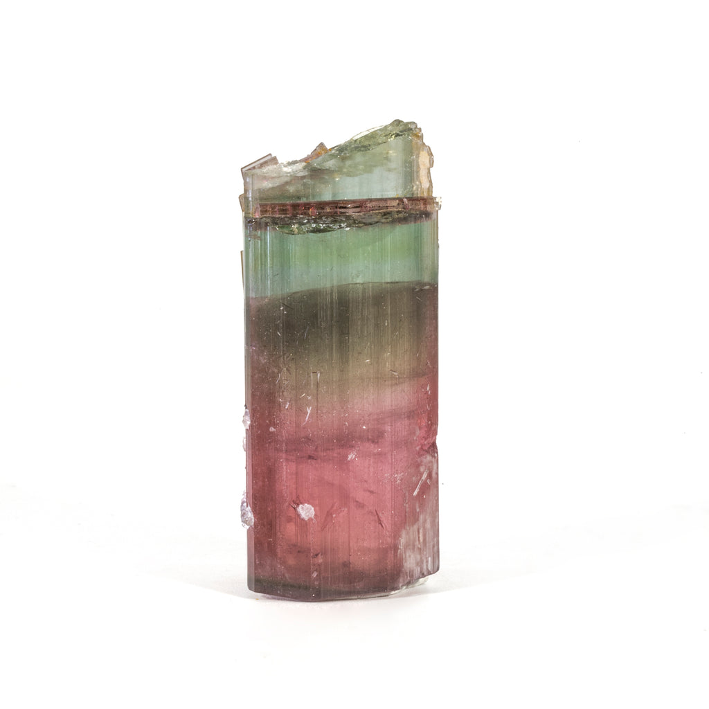 Cat's Eye Bi-Color Tourmaline with Lepidolite 38.4 gram 22.8mm Natural Gem Crystal - Himalaya Mine, San Diego, California, USA