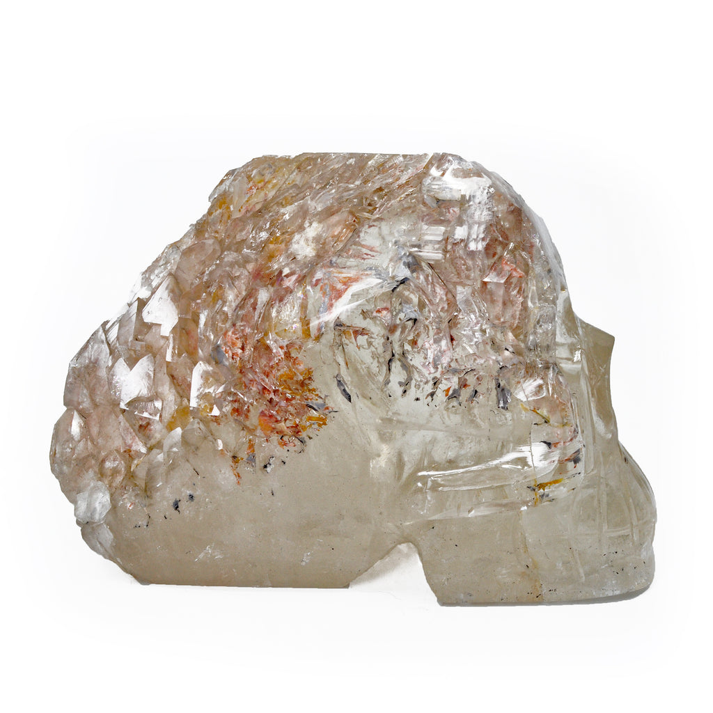 Elestial Smoky Citrine 4.99 inch 6.41 lbs Partially Carved Natural Crystal Skull - Brazil