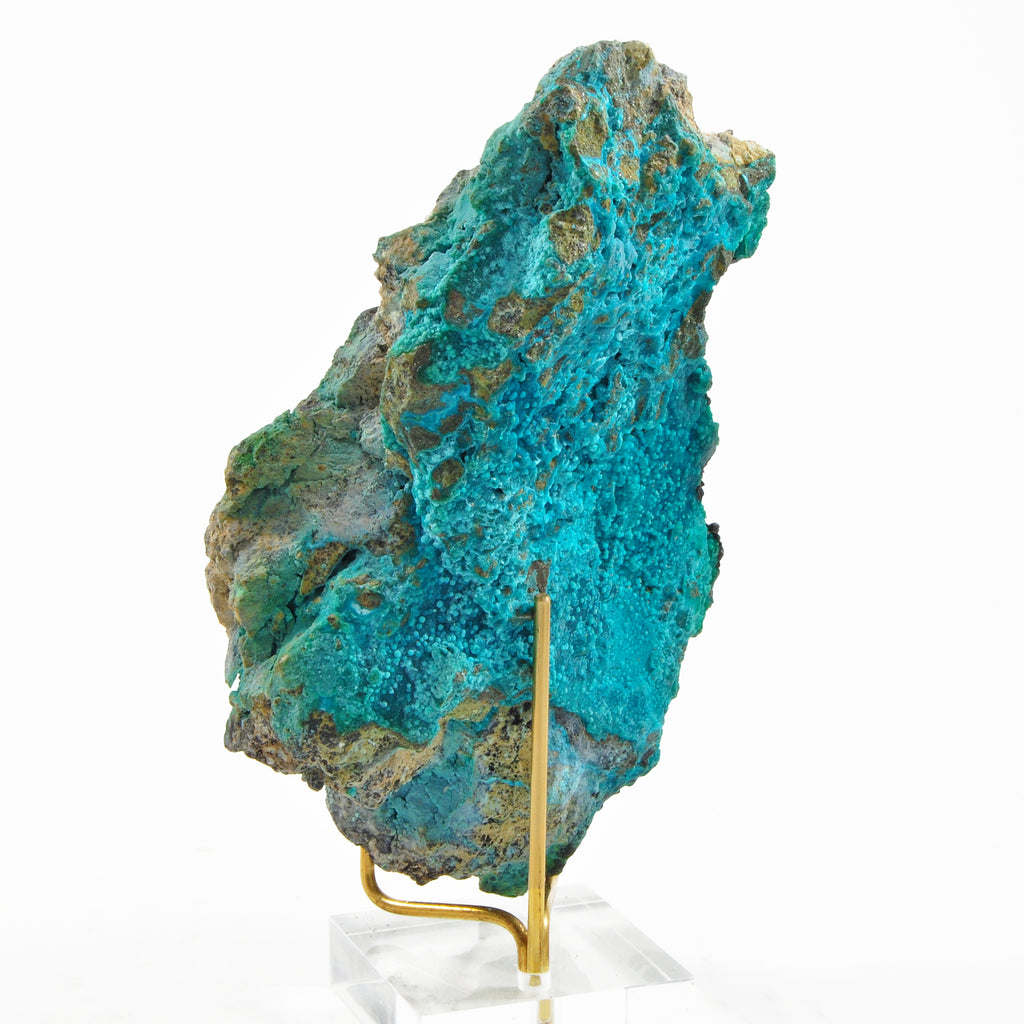 Heterogenite Over Chrysocolla 5.5 inch 0.62lbs Natural Crystal Specimen - Congo