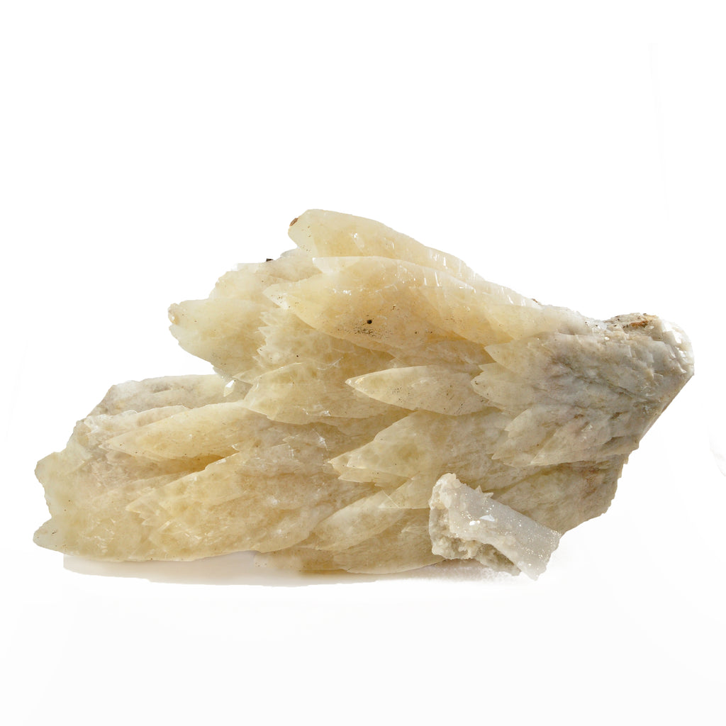 Calcite 14.0 inch 12.8 lbs with Danburite Natural Crystal Specimen - Mexico