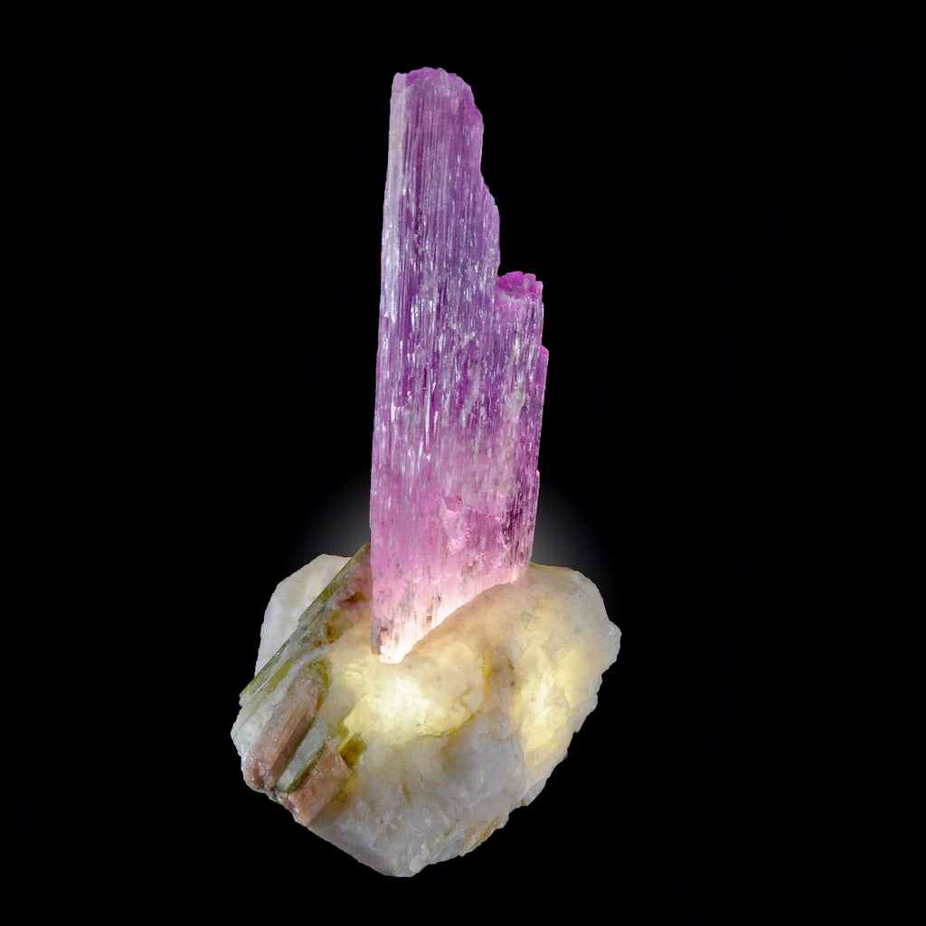 Kunzite Natural Gem Crystal on Custom Tourmaline in Quartz Light Base