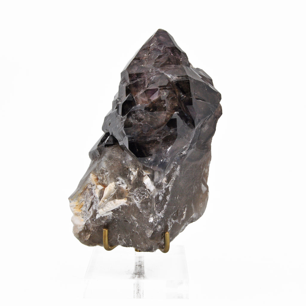 Smoky Quartz Elestial 5.30 inch 1.54 lbs with Amethyst Natural Crystal Specimen - Brazil