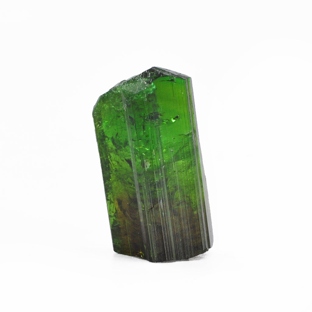 Chrome Green and Pink Bi Color Tourmaline 27.5mm 31.3ct Natural Gem Crystal - Tanzania