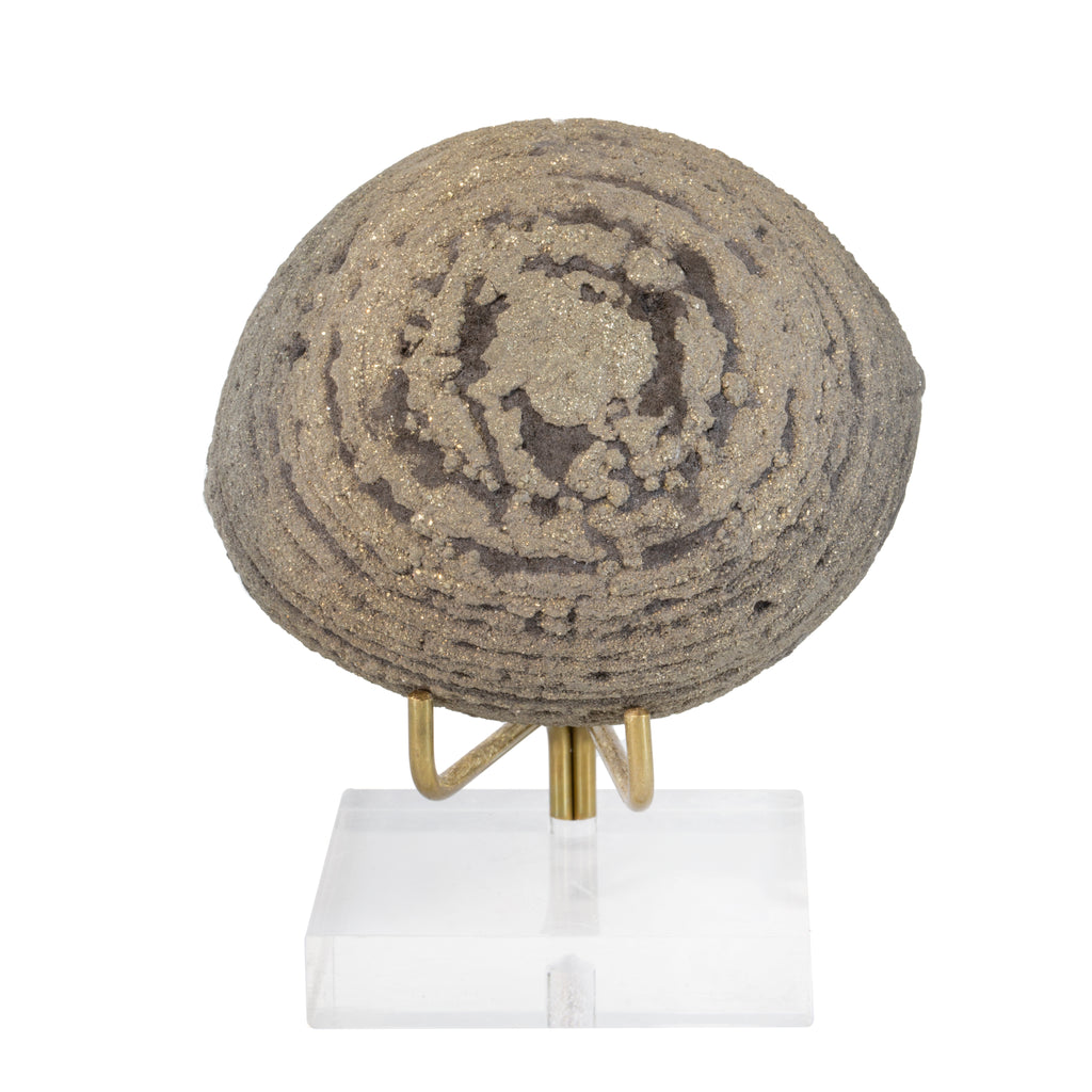 Pyrite 3.5 inch 1.32 lb Natural Concretion Crystal - China