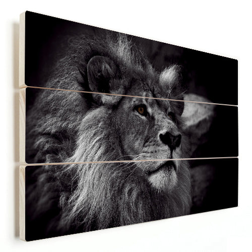 Lion - Elegance (Wood)