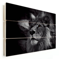 Lion - King Of The Animals (Wood)