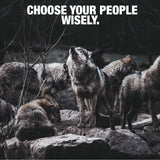 Wolf Pack - Choose Wisely (Poster)