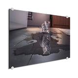 Tiger - The Big Cat (Plexiglass)