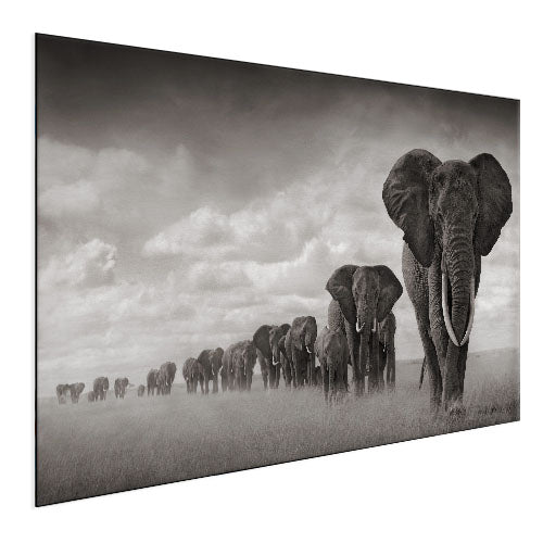 Elephant - Big Herd (Aluminum)