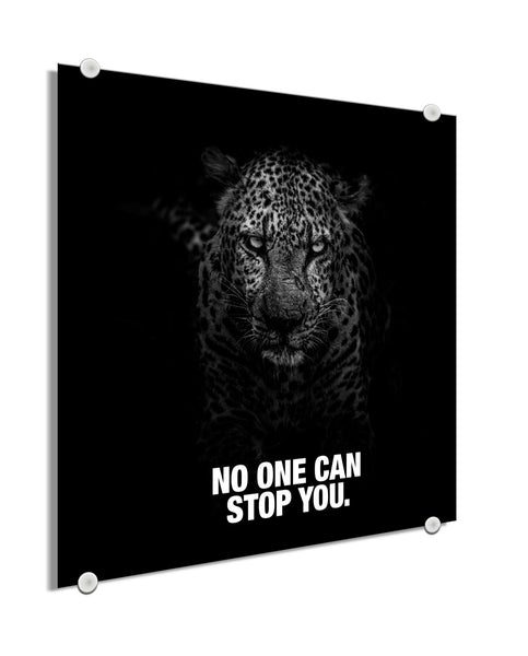 Panther - No One Can Stop You (Plexiglass)