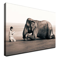 Elephant - The Sweet Giant (Canvas)
